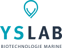 YSLAB